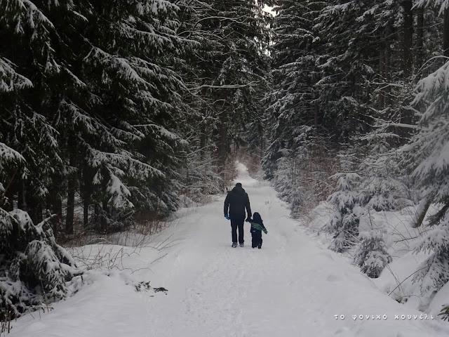 Στο χιονισμένο δάσος της Βαυαρίας... / Winter forest in Bavaria, Germany