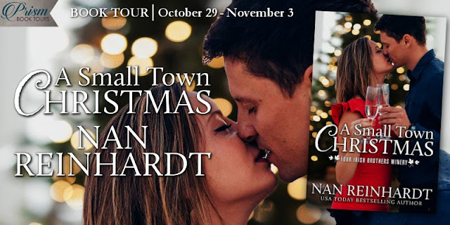 A Small Town Christmas book tour banner