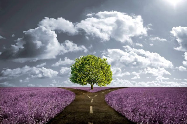Saat Dilema Menimpa, Shalat Istikharah Saja Memohon Petunjuk Allah, Begini Tata Caranya.....