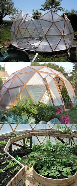 geodome greenhouse - garden