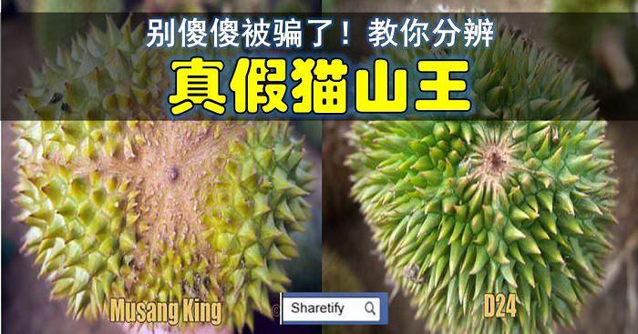 http://www.sharetify.com/2015/06/5_26.html
