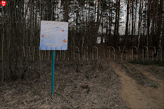 Лов золотых рыбок на Ляховичском водохранилище без путевки запрещен