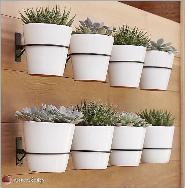 ideas for a small home garden 1