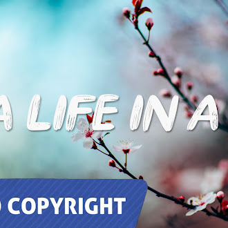 NO COPYRIGHT MUSIC: Ian Post - A life in a day