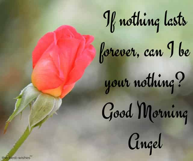 good morning angel i love you sms