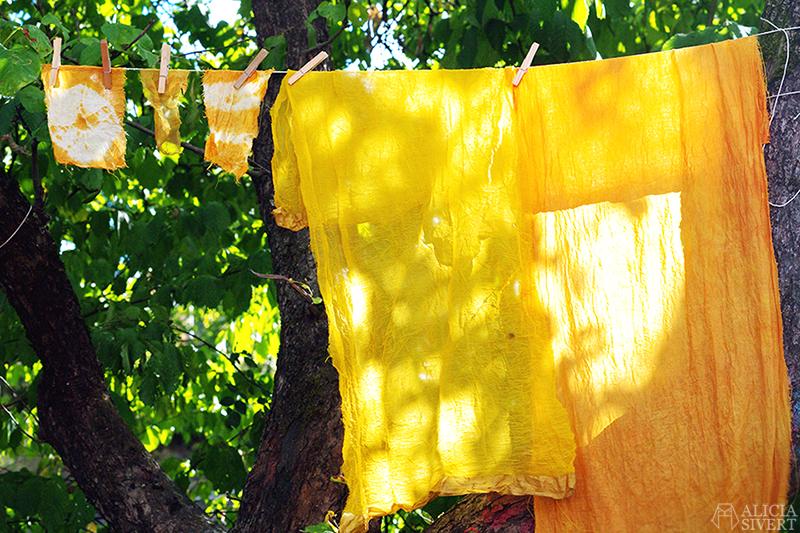 aliciasivert alicia sivert alicia sivertsson art lab gnesta lina sofia lundin växtfärgning naturlig färgning färga med växter skapa skapande kreativitet textil textilt hantverk textilhantverk konst textilkonst kurs workshop