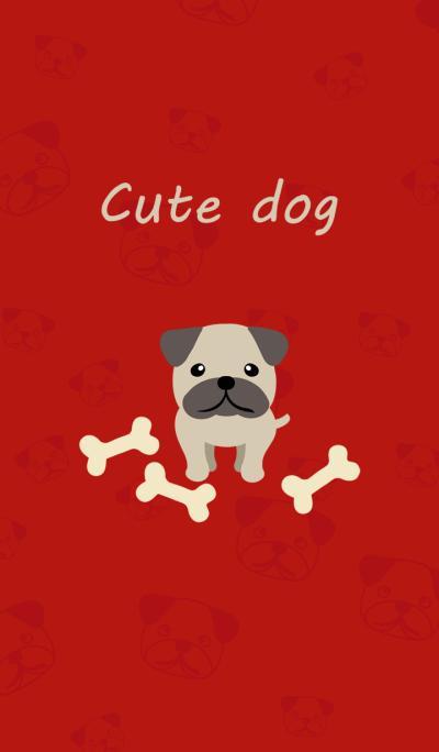 새해 축하 - Pug