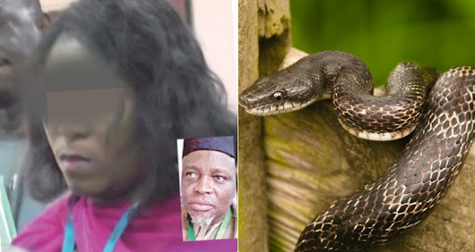 JAMB suspends Staff over N36m swallowed by Snake