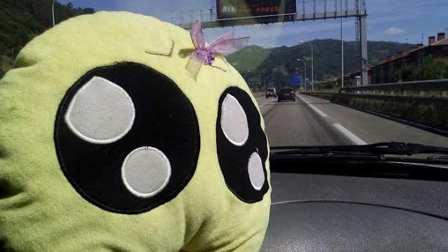 Excursión a la Ruta del Alba - Asturias