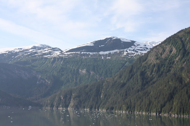Endicott Arm Fjord Alaska viewed from a cruise ship