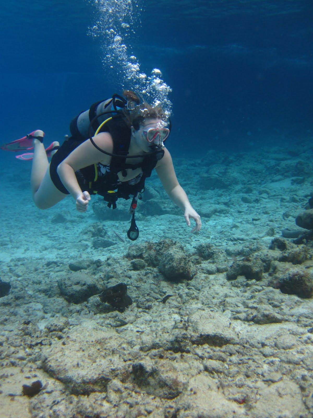 Jen's Updates: Scuba Diving Cozumel