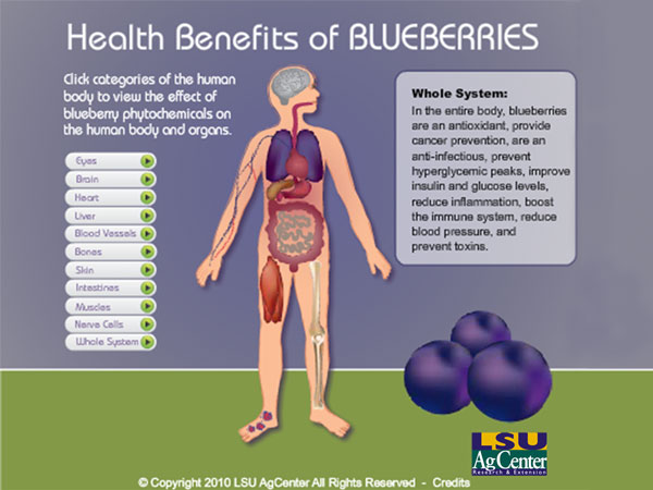 Blueberry medicinal use   Growing Marijuana   Pinterest ...   Blueberry Medicinal Uses