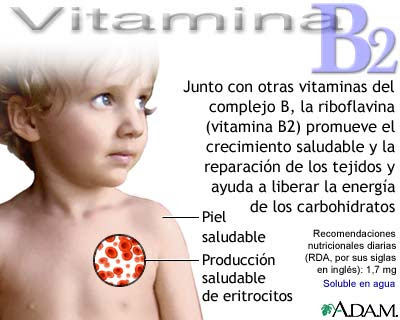 Perfil cu ntico personal vitamina b2 o riboflavina for La b b
