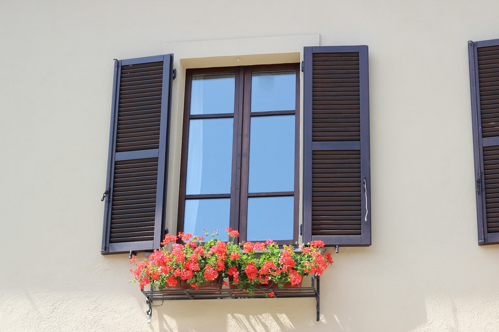 Albertine More Italian Windows