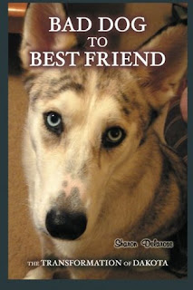 Bad-dog-to-best-friend-book