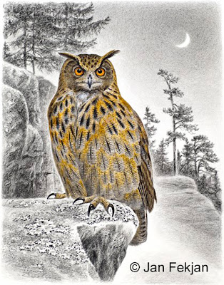 Bilde av digigrafiet 'Hubro'. Digitalt trykk laget på bakgrunn av et maleri av en fugl. En illustrasjon av hubro, Bubo bubo. Fuglen sitter på en stein, i en fjellside. Nattmotiv. I bakgrunnen er månen, en nymåne, oppe på himmelen. Stilen kan beskrives som figurativ og realistisk. Bildet er i høydeformat.