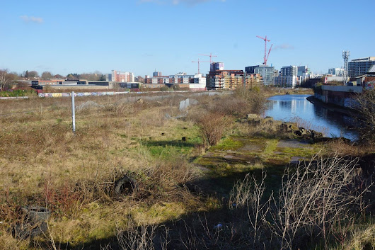 Pomona island & Woodberry Wetlands - very different futures