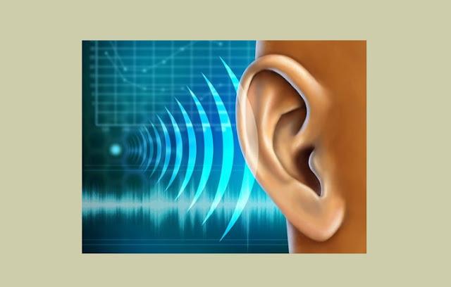 Proses Terjadinya Pendengaran