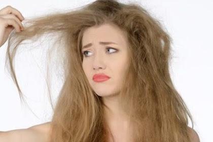 6 Cara Alami Merawat Dan Mengatasi Rambut Kering