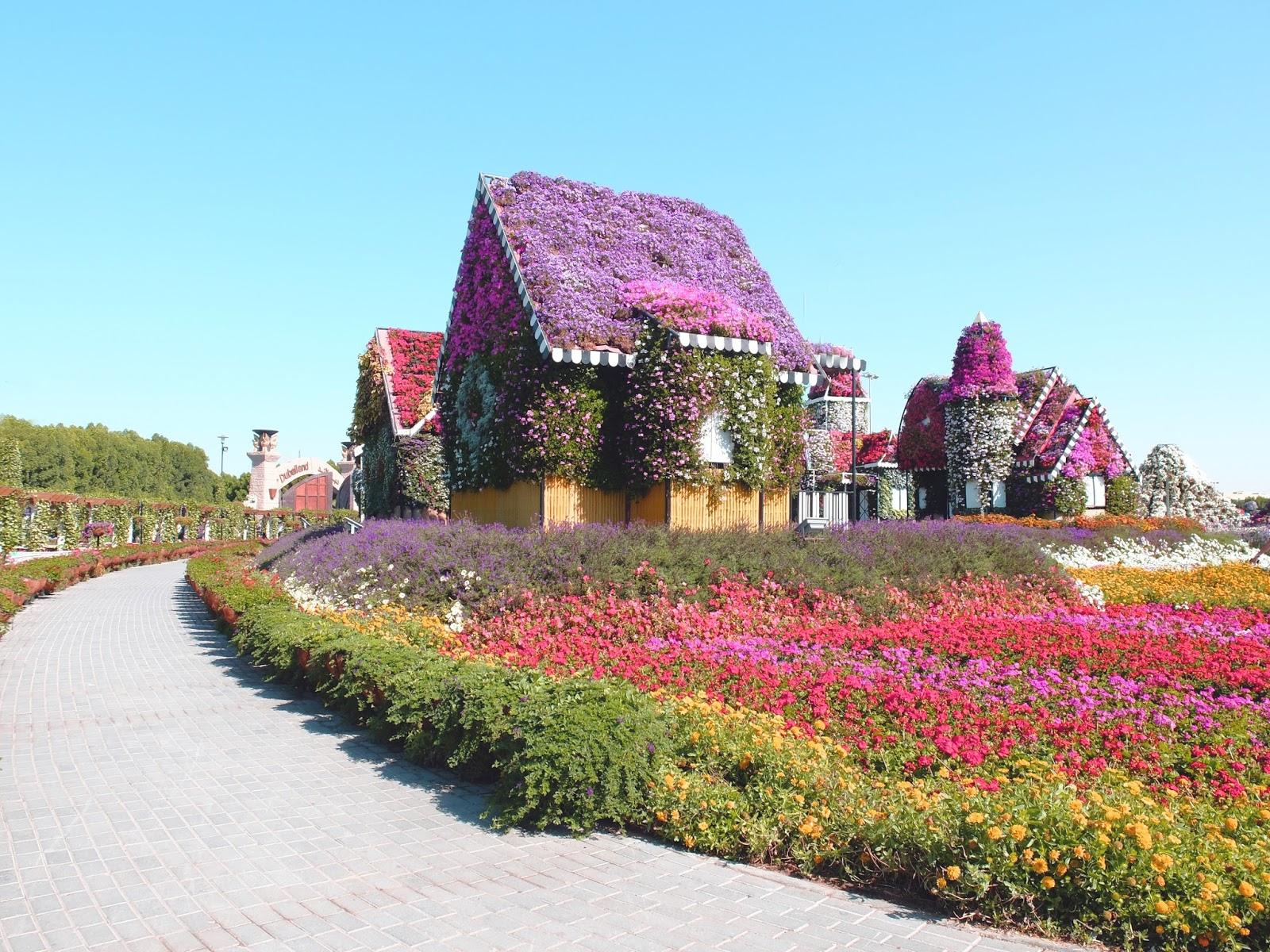 Natural Flower Garden : The world s most extravagant garden dubai miracle