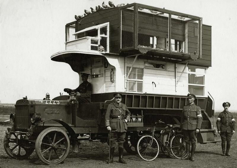 Лондонский автобус, переоборудованный в голубятню