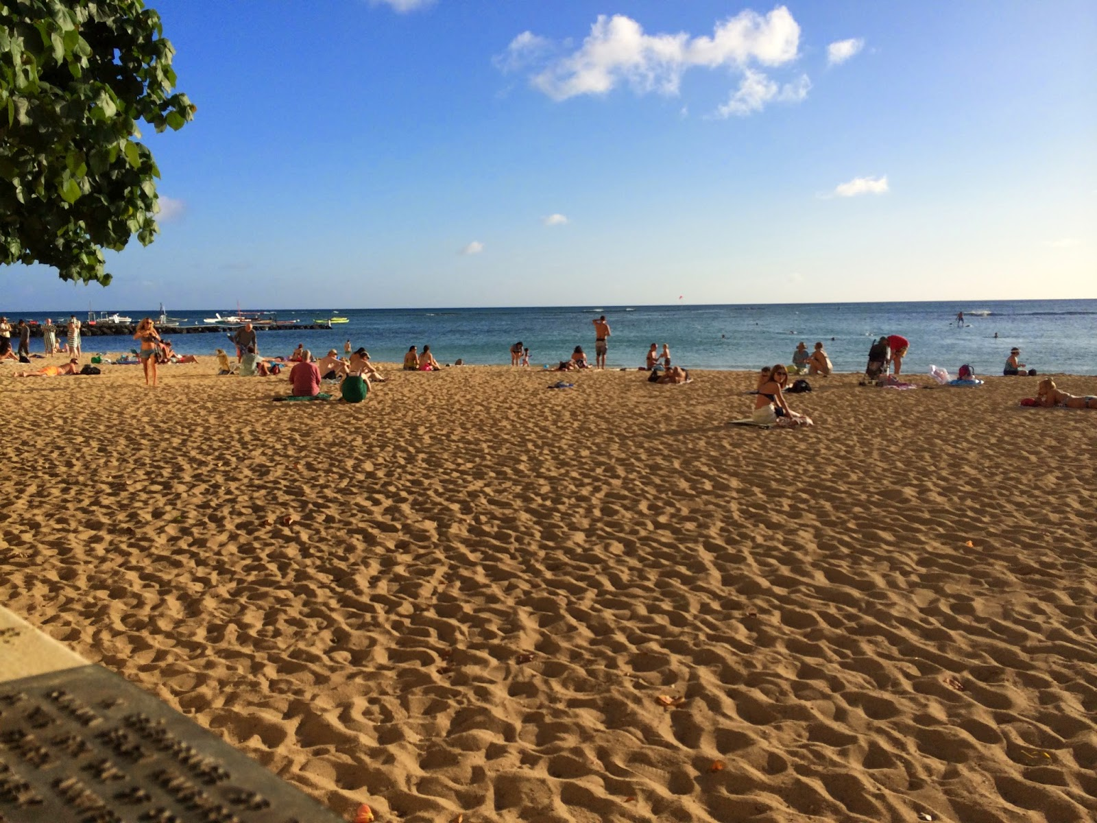 Taste Of Hawaii Hau Tree Lanai Byo Concert Small In Sand The View From Our Table Was Incredible