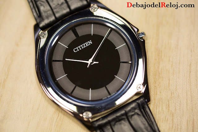 CITIZEN BASEL 20165