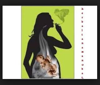 merokok selama hamil, hamil, mengandung, merokok, rokok, bahaya asap rokok bagi wanita hamil, merokok selama kehamilan