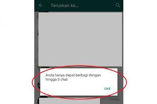 Pembatasan Penerusan Pesan melalui WhatsApp untuk Mengurangi Penyebaran Hoaks