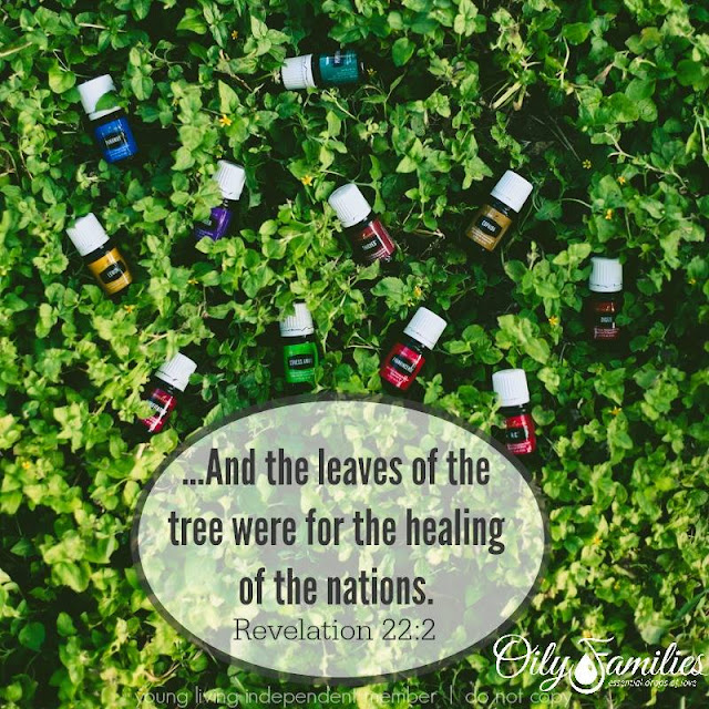 Revelation 22:2 And the leaves of the tree were for the healing of the nations