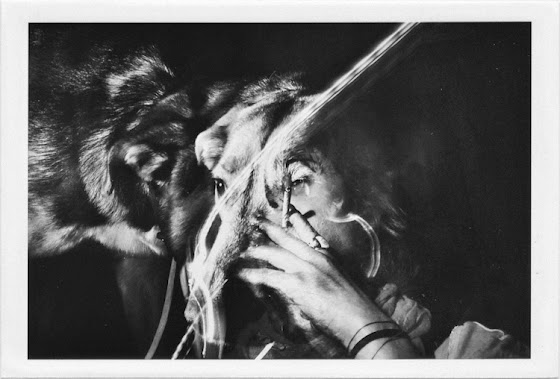 dirty photos - a - dark double exposure photo of smoking girl and dog