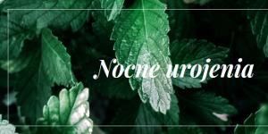 http://nocne-urojenia.blogspot.com/
