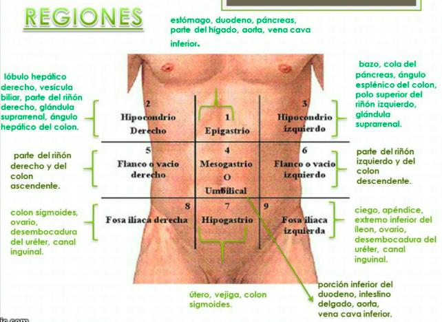 Hinchazón severa en el estómago