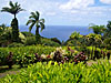 http://shotonlocation-eng.blogspot.nl/search/label/USA%20-%20Maui%20HI