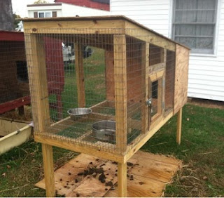 raised kennel with shit board