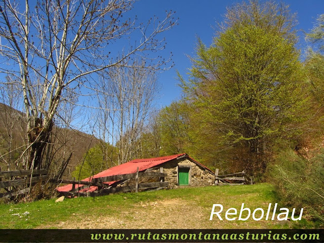 Rebollau, Tarna