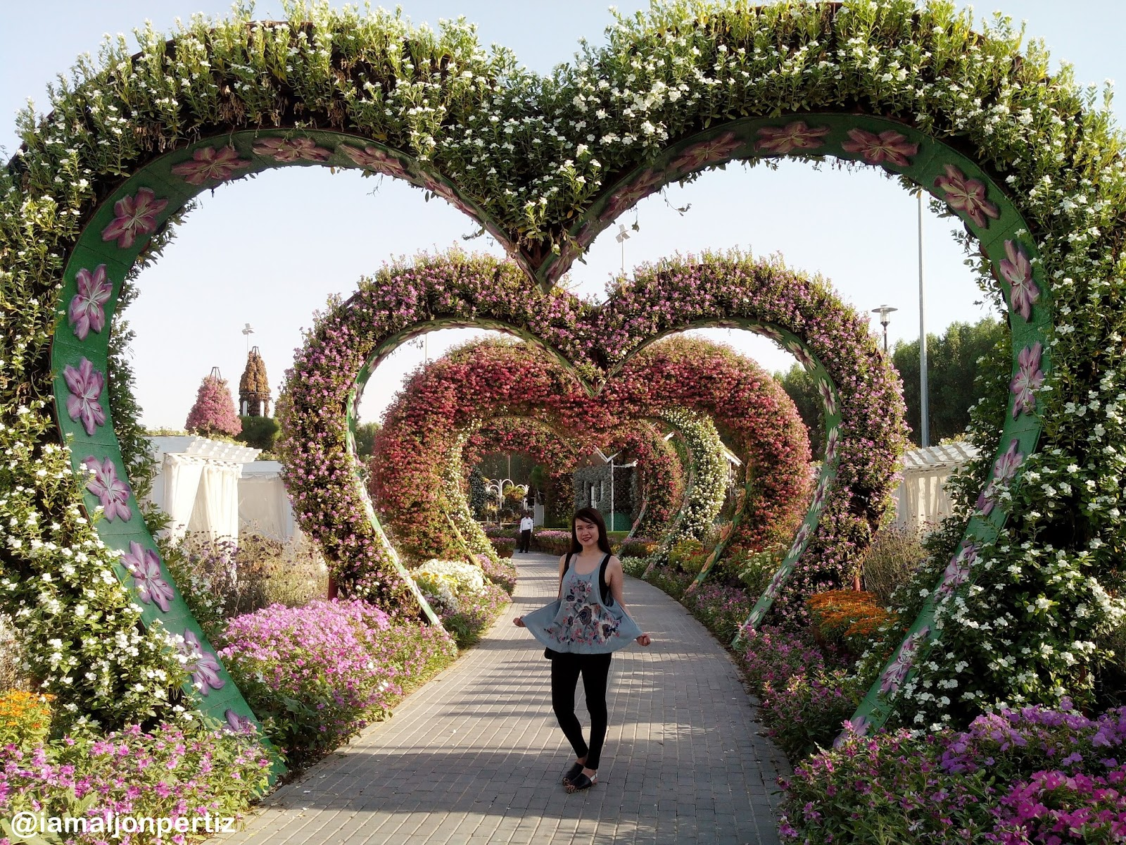 Dubai Miracle Garden: A Paradise in the Desert |I am Aljon Pertiz