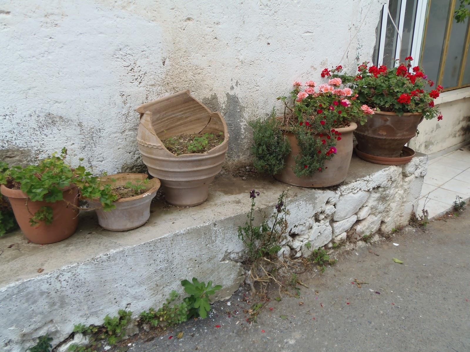 village, crete, travel, greece, greek, kastelli, traveling, island, olive oil