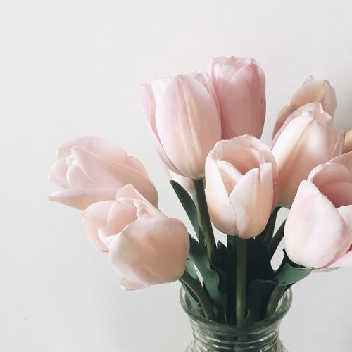 tulip-instagram-brooklyn-coolchic-style-fashion