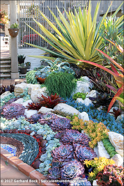 As It Turns Out The Succulent Mosaic Is Just One Part Of Garden Which Was Completely Renovated In 2005 2006 With Matt Maggio S Help