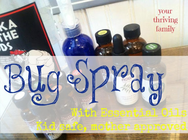 Indoor, Outdoor All-Around Bug Spray {Essential Oil}