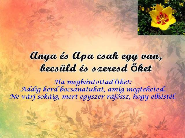 anya apa idézetek Minden egy helyen: Anya és Apa csak egy van !!