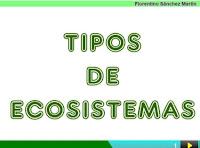 https://cplosangeles.educarex.es/web/segundo_curso/naturales_2/ecos_tipos02/ecos_tipos02.html