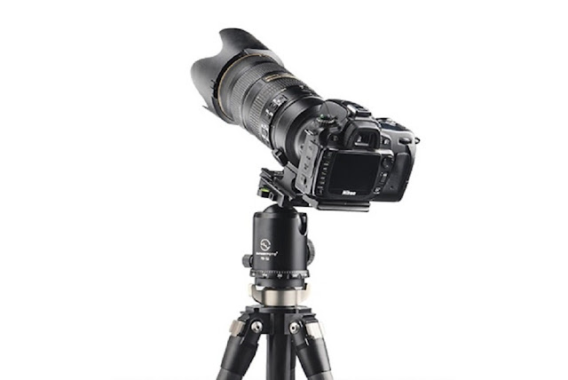 Sunwayfoto FB-52 on T2C40C CF Tripod