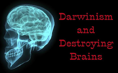 Another dangerous area of Darwinian quackery is evolutionary psychology. Lobotomies were a terrible destructive practice based entirely on evolutionary presuppositions.