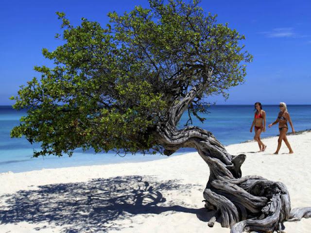 5 Passeios Baratos em Aruba: Crédito: ATA SUP em Aruba. Créditos das Fotos: ATA