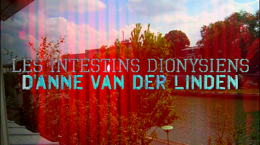 "IN RE-LECTURE : ""LES INTESTINS DIONYSIENS D'ANNE VAN DER LINDEN"""