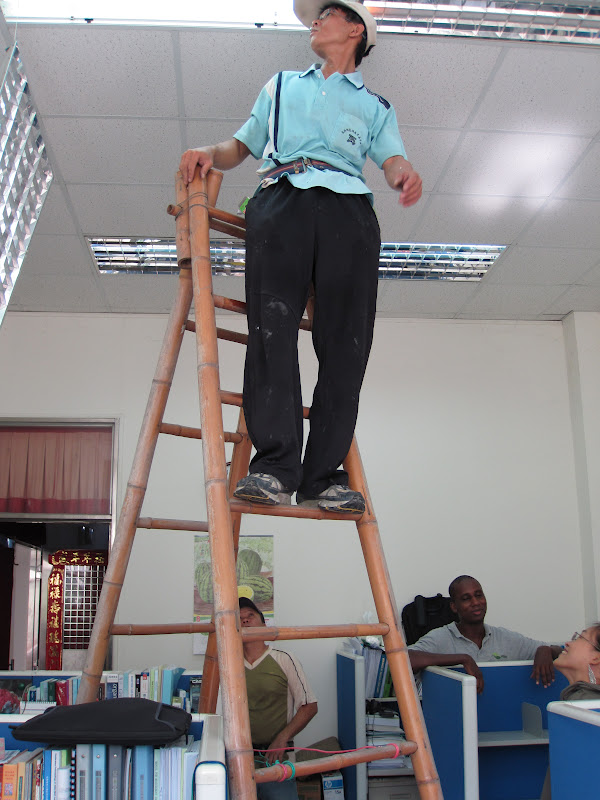 Estudiando agricultura en taiw n usos del bamb escalera for Escalera de electricista