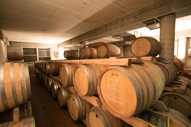 Bottaia-Azienda vinicola Fontezoppa
