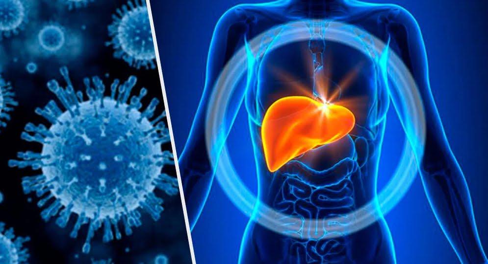 Italia primo Paese Ue per tasso di mortalità da epatite virale